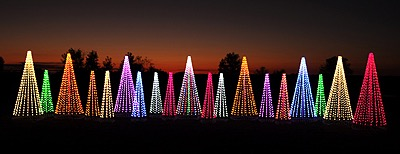 3D_christmas_trees